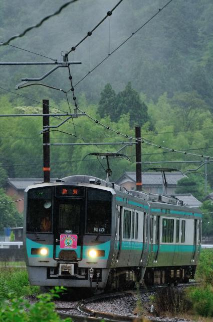 DSC_8139NX.JPG