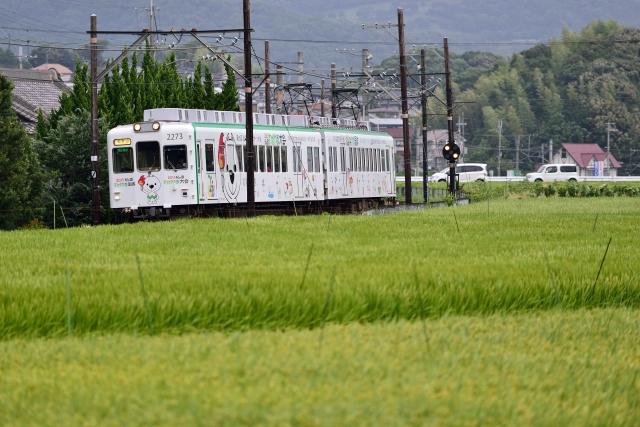 DSC_6051NX_004.JPG
